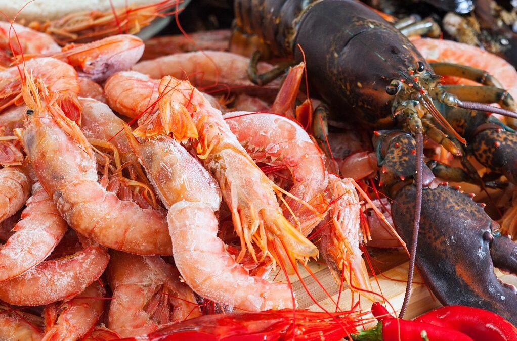 Restaurante marisco Vigo: Una delicatessen para estas fiestas.