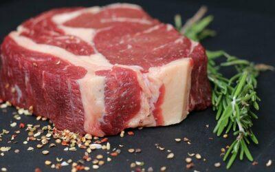 Vigo meat restaurant: A pleasure for the senses.
