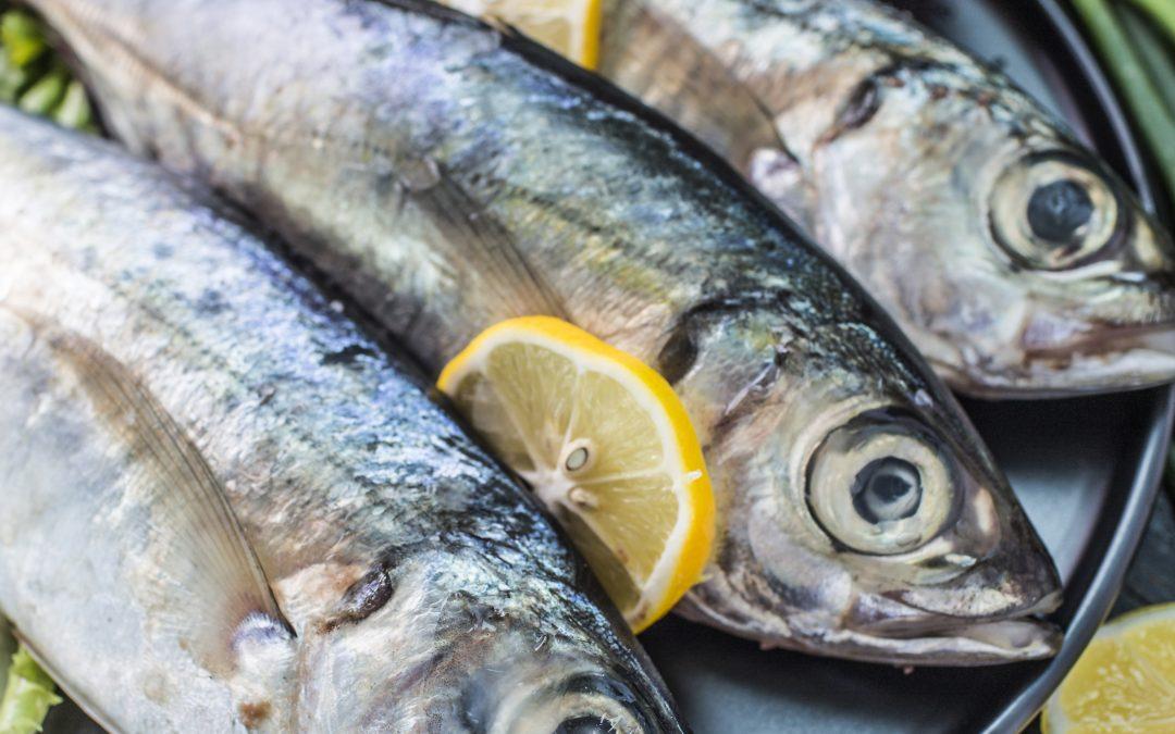 Restaurante pescado Vigo: Los mejores productos de la zona